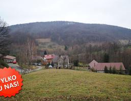 Działka na sprzedaż, Pleśna, 2900 m²