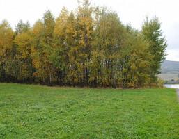 Działka na sprzedaż, Burzyn, 2800 m²