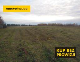 Działka na sprzedaż, Rudzienice, 15000 m²