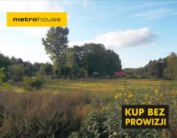 Działka na sprzedaż, Dziarnówko, 9000 m²