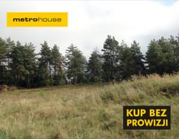 Działka na sprzedaż, Radoszki, 31300 m²
