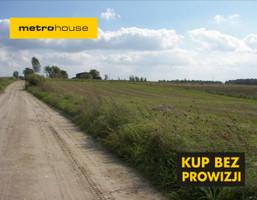 Działka na sprzedaż, Wiewiórka, 40700 m²