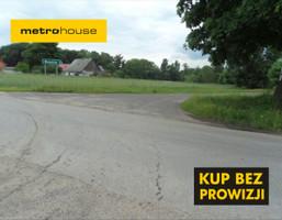 Działka na sprzedaż, Rudnik, 21700 m²