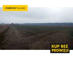 Działka na sprzedaż, Niepiekła, 12917 m²