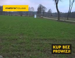 Działka na sprzedaż, Lewiczyn, 57100 m²
