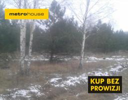 Działka na sprzedaż, Koszelewy, 20600 m²