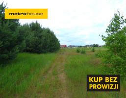 Działka na sprzedaż, Teodorów, 3000 m²
