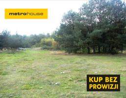Działka na sprzedaż, Olszewice, 10500 m²