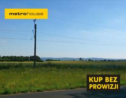 Działka na sprzedaż, Wilczyce, 24400 m²