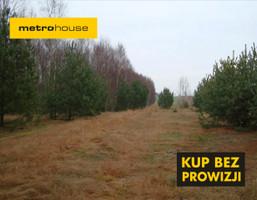 Działka na sprzedaż, Huta Dłutowska, 3900 m²