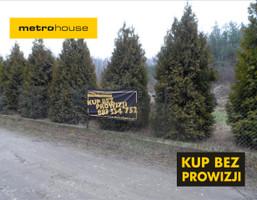 Działka na sprzedaż, Jastrzębnik, 3000 m²
