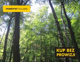 Działka na sprzedaż, Rawałowice, 165000 m²