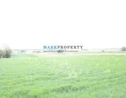 Działka na sprzedaż, Kijany, 11900 m²