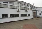 Magazyn, hala do wynajęcia, Toruń Bydgoskie Przedmieście, 650 m²