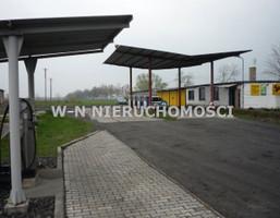 Działka na sprzedaż, Krzepielów, 11700 m²