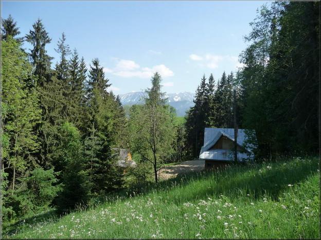 Dom na sprzedaż, Zakopane, 600 m² | Morizon.pl | 8226