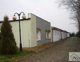 Magazyn, hala na sprzedaż, Kobylnica, 1350 m²