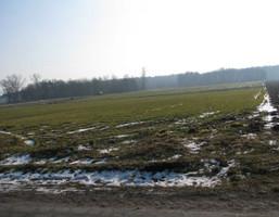 Działka na sprzedaż, Świebodzin, 11000 m²