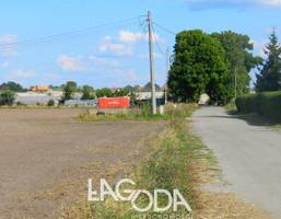 Działka na sprzedaż, Deszczno, 31000 m²