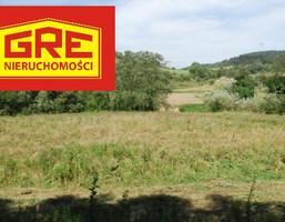 Działka na sprzedaż, Żyznów, 10000 m²