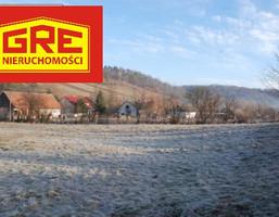 Działka na sprzedaż, Górzanka, 2900 m²