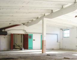 Magazyn na sprzedaż, Olszanica, 270 m²