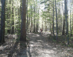 Działka na sprzedaż, Polańczyk, 10400 m²