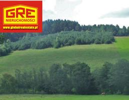 Działka na sprzedaż, Czaszyn, 67000 m²