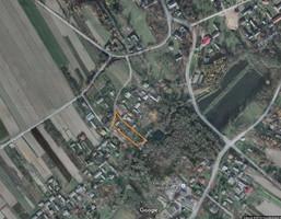 Działka na sprzedaż, Rzeczyca Ziemiańska, 3500 m²