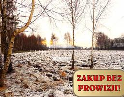 Działka na sprzedaż, Taczów, 15400 m²