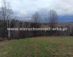 Działka na sprzedaż, Żegocina, 3000 m²