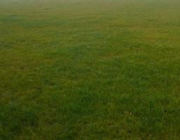 Działka na sprzedaż, Wólka Kosowska, 1000 m²