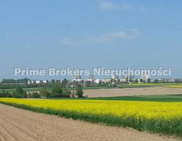 Działka na sprzedaż, Abramowice Prywatne, 4508 m²