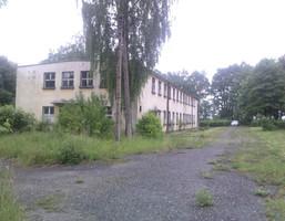 Działka na sprzedaż, Olszowa, 24500 m²