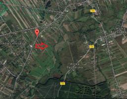 Działka na sprzedaż, Gołków, 14800 m²