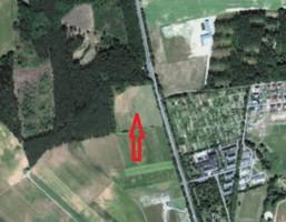 Działka na sprzedaż, Kalsk, 13000 m²