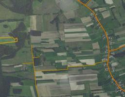 Działka na sprzedaż, Wichów, 26800 m²