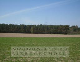 Działka na sprzedaż, Szczypiorno, 40000 m²