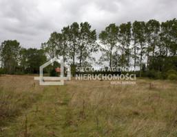 Działka na sprzedaż, Cecenowo, 62000 m²