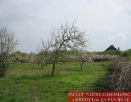 Działka na sprzedaż, Malczyce, 3900 m²