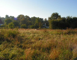 Działka na sprzedaż, Drzonów, 4000 m²