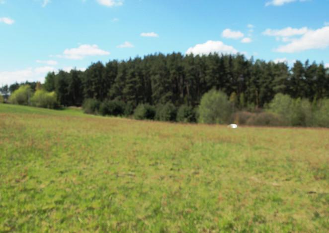 Działka na sprzedaż, Pręgowo Górne Wichrowe Wzgórza, 6000 m² | Morizon.pl | 9196