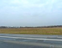 Działka na sprzedaż, Bolemin, 7492 m²