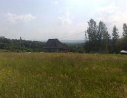 Działka na sprzedaż, Olszowice, 3000 m²