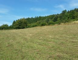Działka na sprzedaż, Nieledwia, 2000 m²