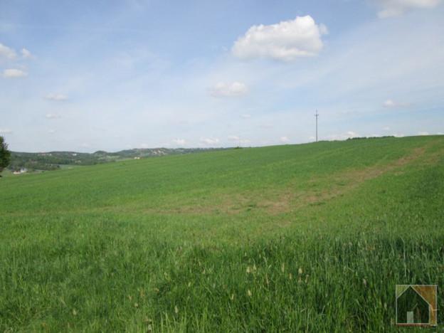 Działka na sprzedaż, Niżowa, 27000 m² | Morizon.pl | 4507