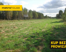 Działka na sprzedaż, Grabina Radziwiłłowska, 7000 m²