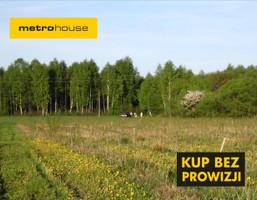 Działka na sprzedaż, Ciemniewo, 68600 m²