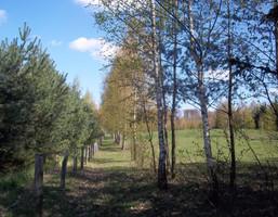 Działka na sprzedaż, Wólka Majdańska, 6014 m²