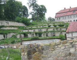 Działka na sprzedaż, Skała, 9800 m²